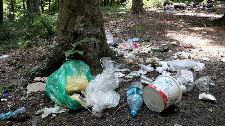 Yine aynı manzara: Piknikçiler ormanı çöplüğü çevirdi