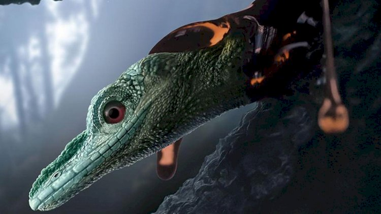 Dünyanın en küçük dinozoru zannediliyordu, gerçek ise yeni anlaşıldı