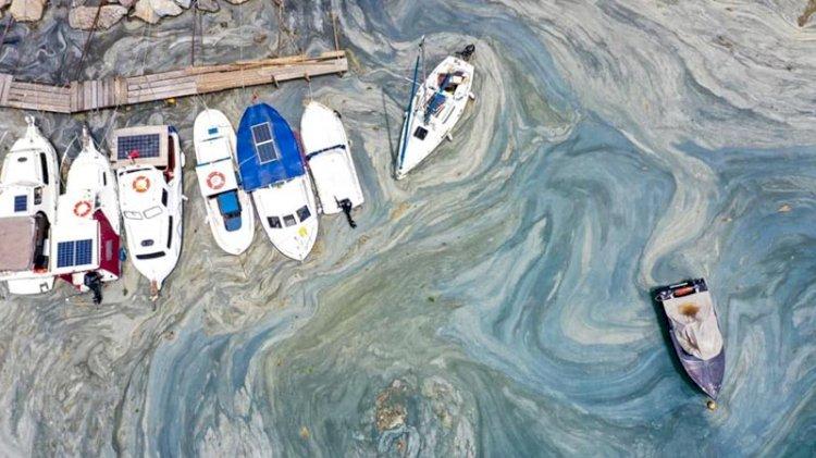 Müsilajlı denizde bu riskler bekliyor