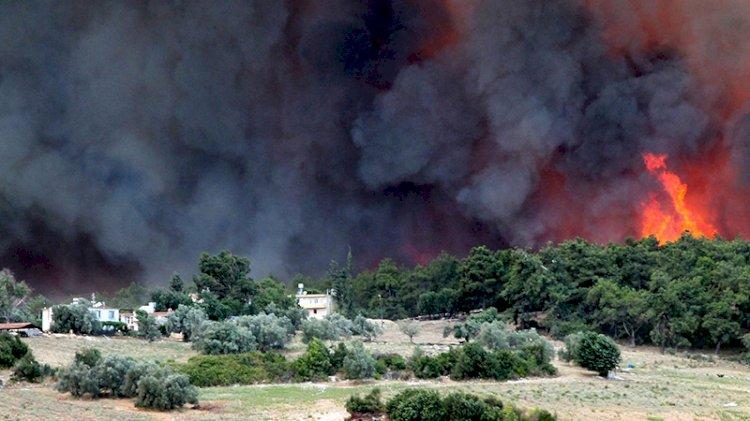 Manavgat alevler içinde: Biz böyle bir yangın görmedik!