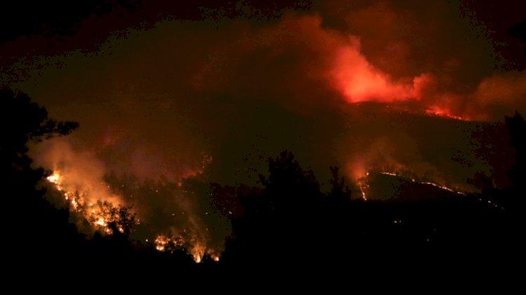 Bakan Pakdemirli Bodrum'daki yangında son durumu açıkladı