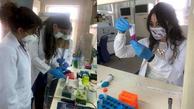 Kovid-19'un yayılmasını engelleyecek yerli aşı, klinik çalışma için izin bekliyor