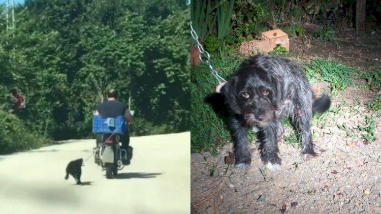 Köpeği motosikletin arkasına bağlayan cani yakalandı