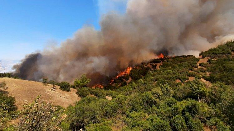 İki ilde daha orman yangını