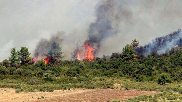 Isparta'da da yangın çıktı!