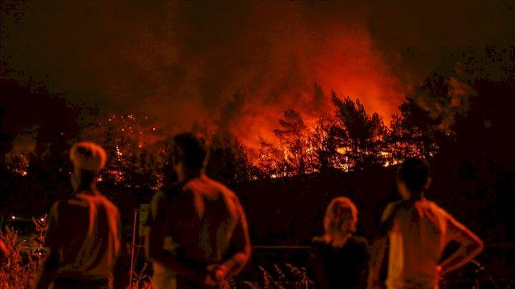 Silahlı kuvvetler neden yangınlara müdahale etmiyor?