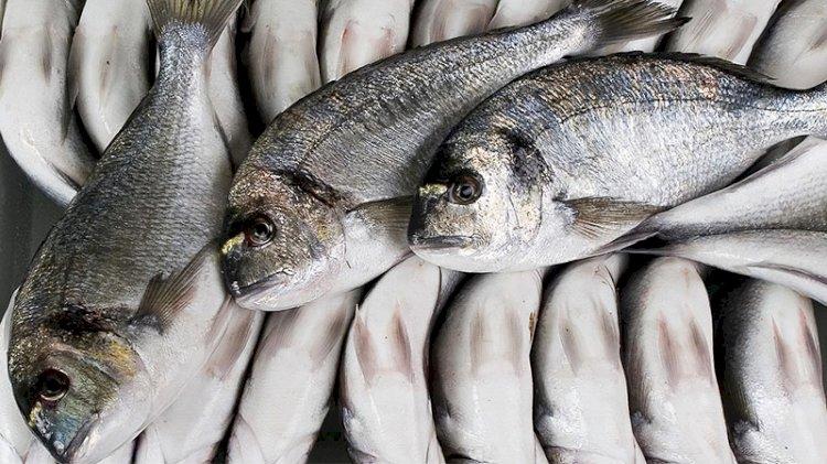 Esmer etli balıklara dikkat!