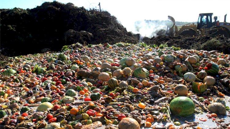 İsraf tablosu: 1,3 milyar ton gıda çöpe gidiyor
