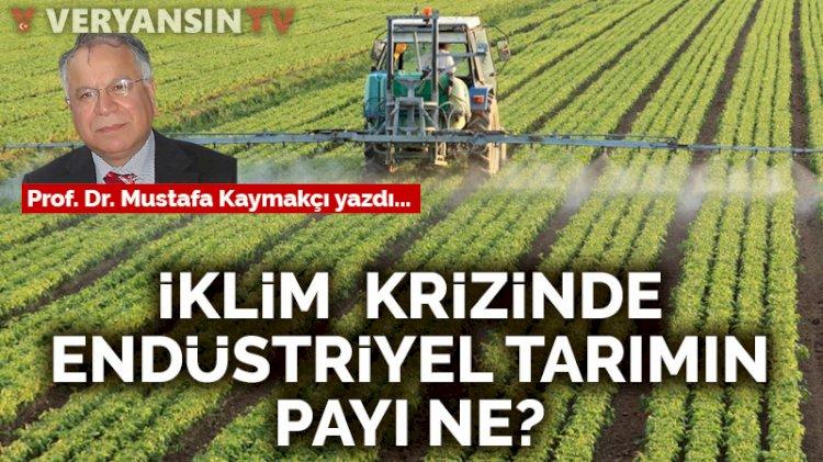İklim krizinde endüstriyel tarımın payı ne?
