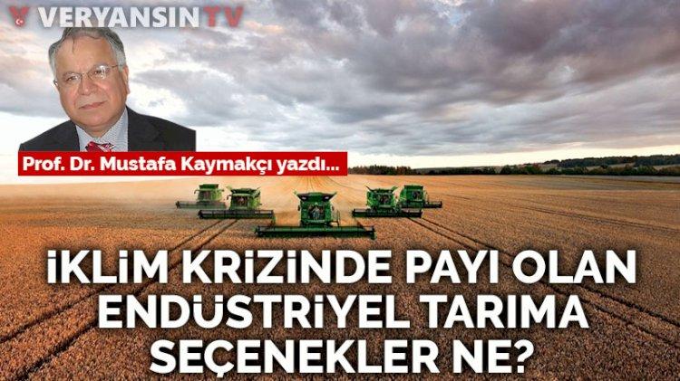 İklim krizinde payı olan endüstriyel tarıma seçenekler ne?