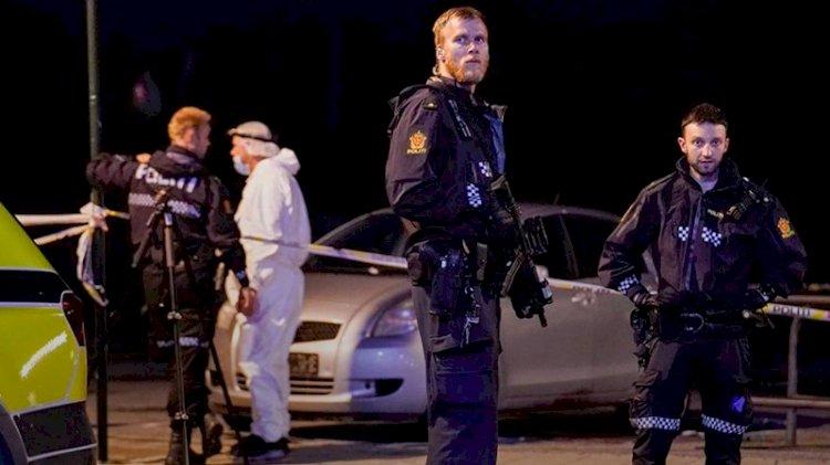 Norveç'te oklu saldırı dehşeti: 5 ölü